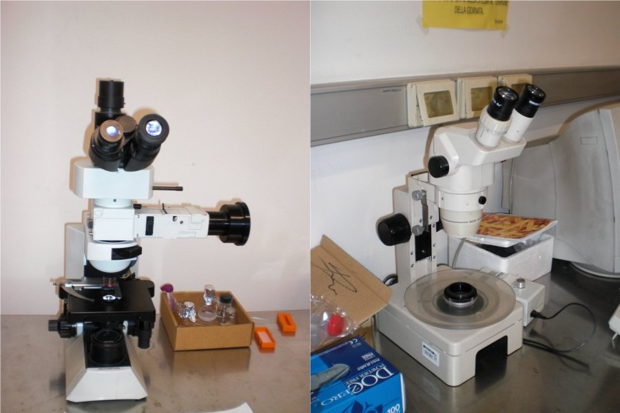 two optical microscopes